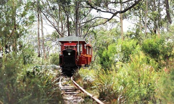 Ida-Bay-Heritage-Railway-16-9 (Small)